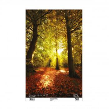 Bilderrahmen Clip-Fix, 30x45cm