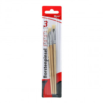 Bristle brushes 3pcs blister set